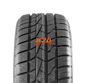 Pneu 205/50 R17 93W XL Roadhog Rgas01 pas cher